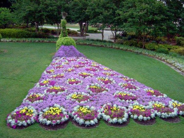 Fleurs ch 1
