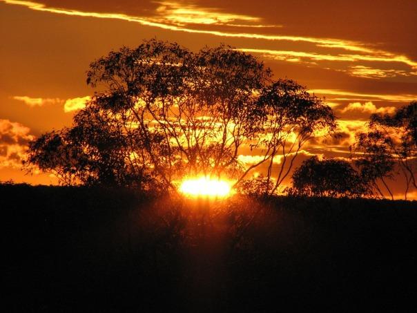 golden-sunset-173594_960_720