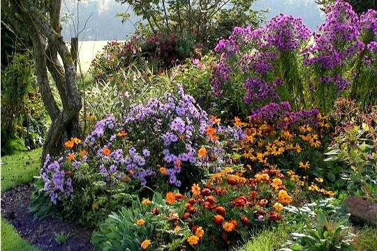 beaux-jardins-6