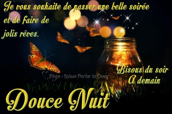 bonne-nuit_236