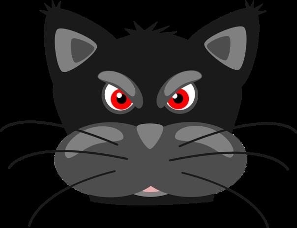 cat-30815_960_720