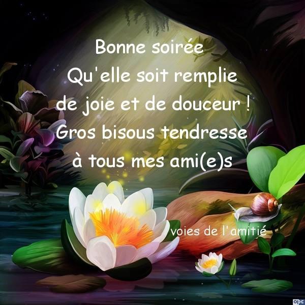 bonne-soiree_1351
