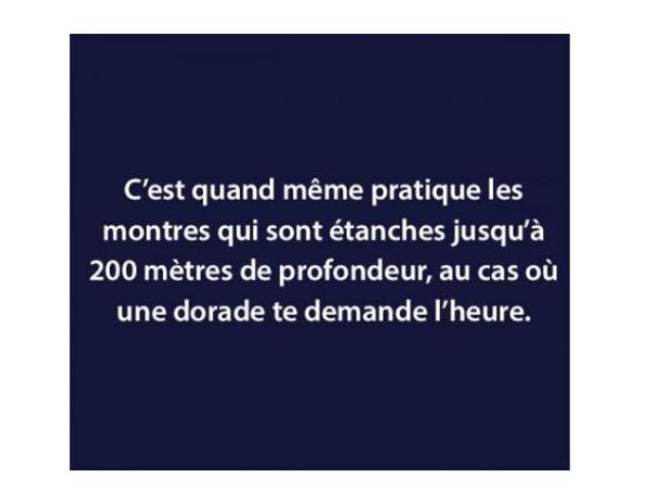 france-9