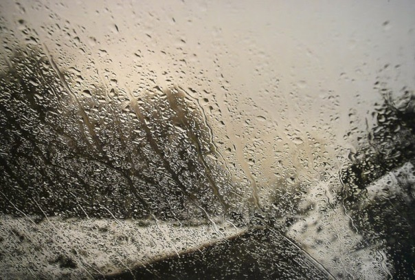 abbas-kiarostami-rain-ser-0051