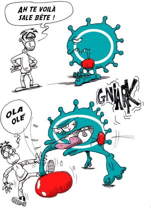 stop-aux-virus-grippe-l-3