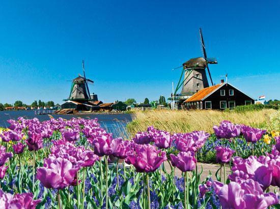 pays_bas-hollande-venlo-la_floriade-02_fotolia