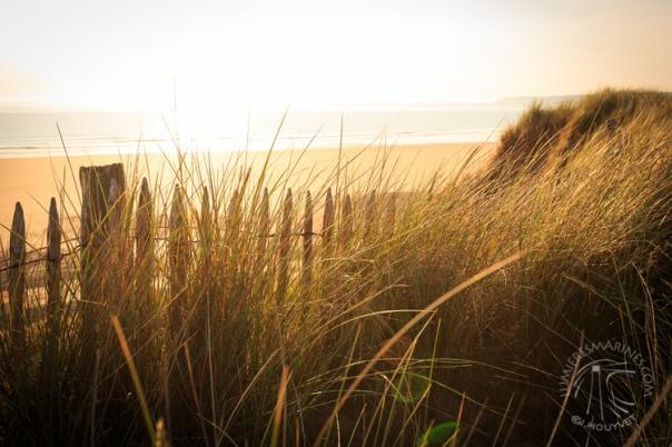 2141996-la-mer-de-sable