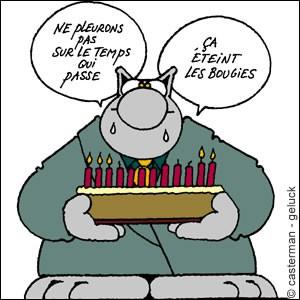 chat-anniversaire22558
