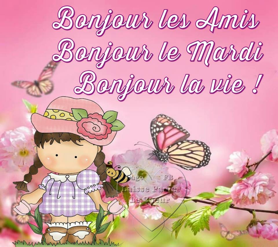 Bon Mardi Marie Des Vignes