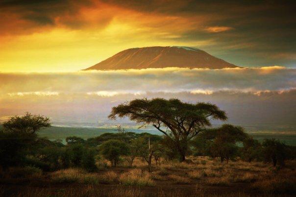 10117273-le-kilimandjaro-en-tanzanie