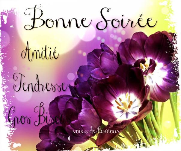 bonne-soiree_121