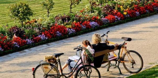 6874708-les-pesticides-n-ont-plus-droit-de-cite-dans-les-jardins