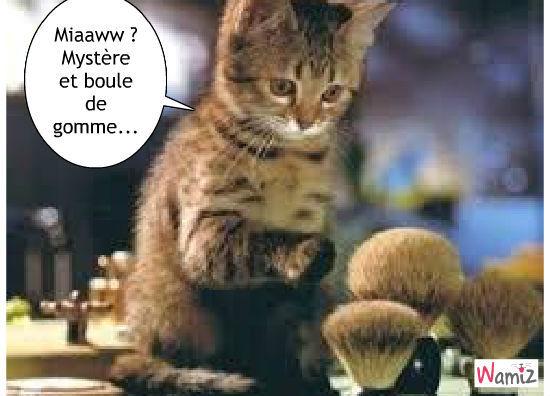 mysteres-et-boule-de-gomme-52593