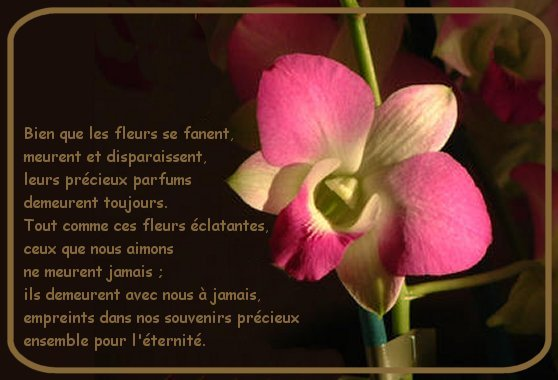 deces-fleur