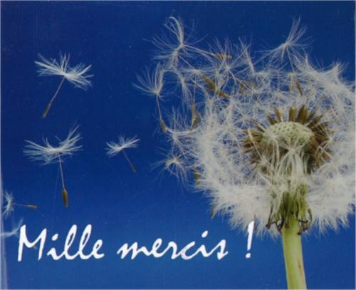 i-grande-143282-mp129-mille-mercis-net