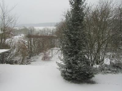 24.02.2013 dernière neige 009