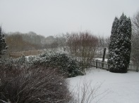 24.02.2013 dernière neige 010