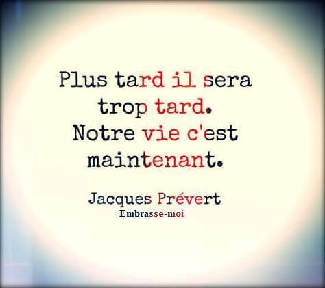 ob_bd1f56_la-vache-rose-jacques-prevert-9