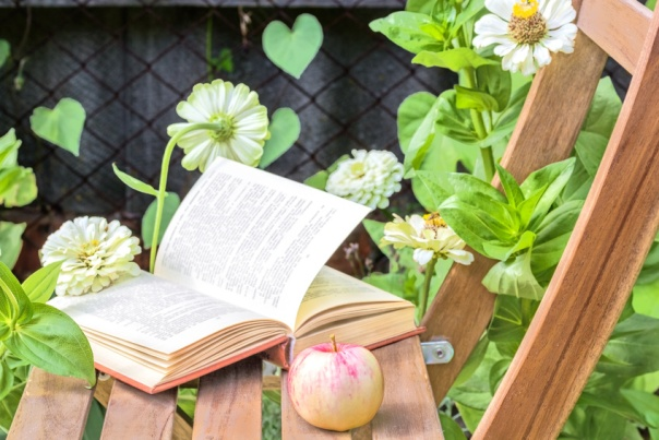 Apple and book on a wooden chair among the flowers