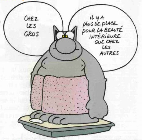 lechat_gros2