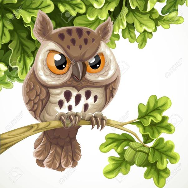 Cute cartoon owl sitting on a oak branch under a crone of leaves