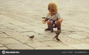 Baby boy feeding sparrows