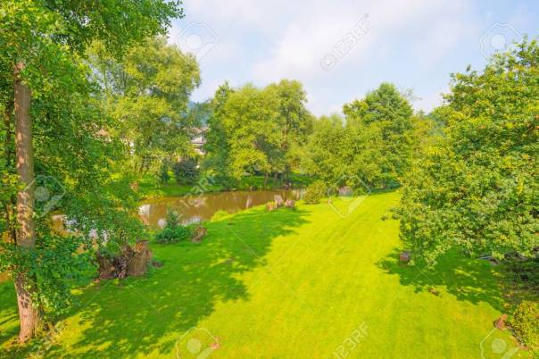 60619061-river-meandering-through-a-sunny-landscape